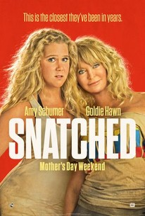 Snatched movie poster.jpg